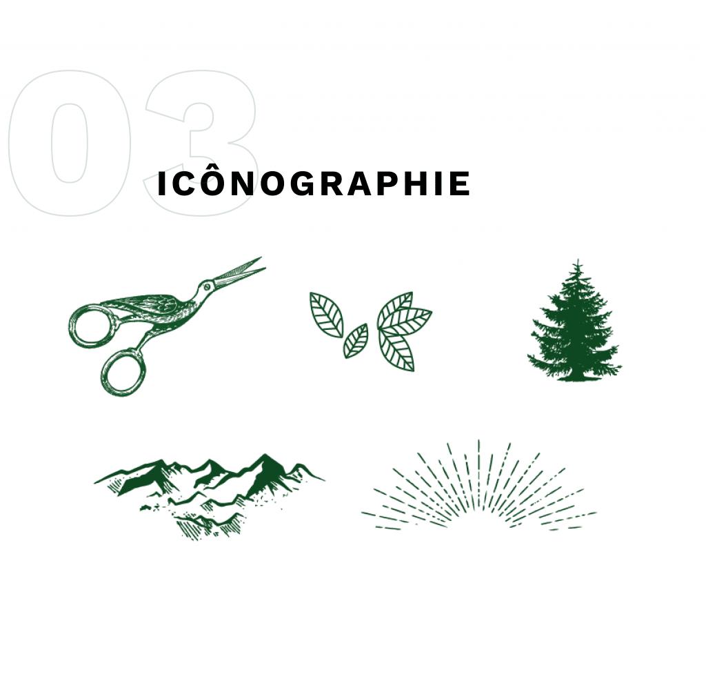 les icônes utilisées pour le fil sauvages : des ciseaux, des feuilles, un sapin, des montagnes, des rayons de soleil