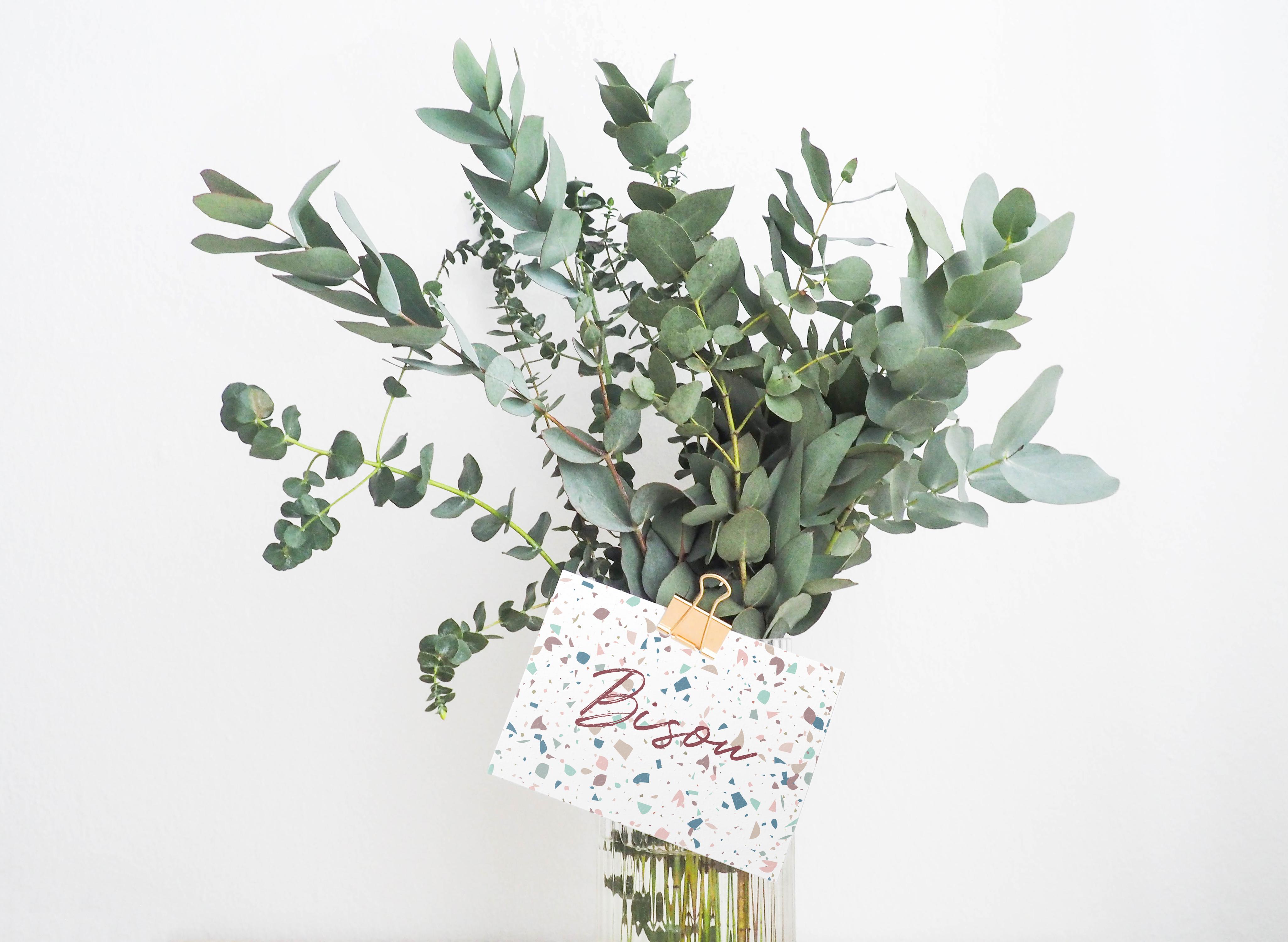 carte postale Bisou avec bouquet de branches d'eucalyptus