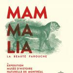 Affiche de l'exposition Mammalia représentant un tigre en gravure ancienne
