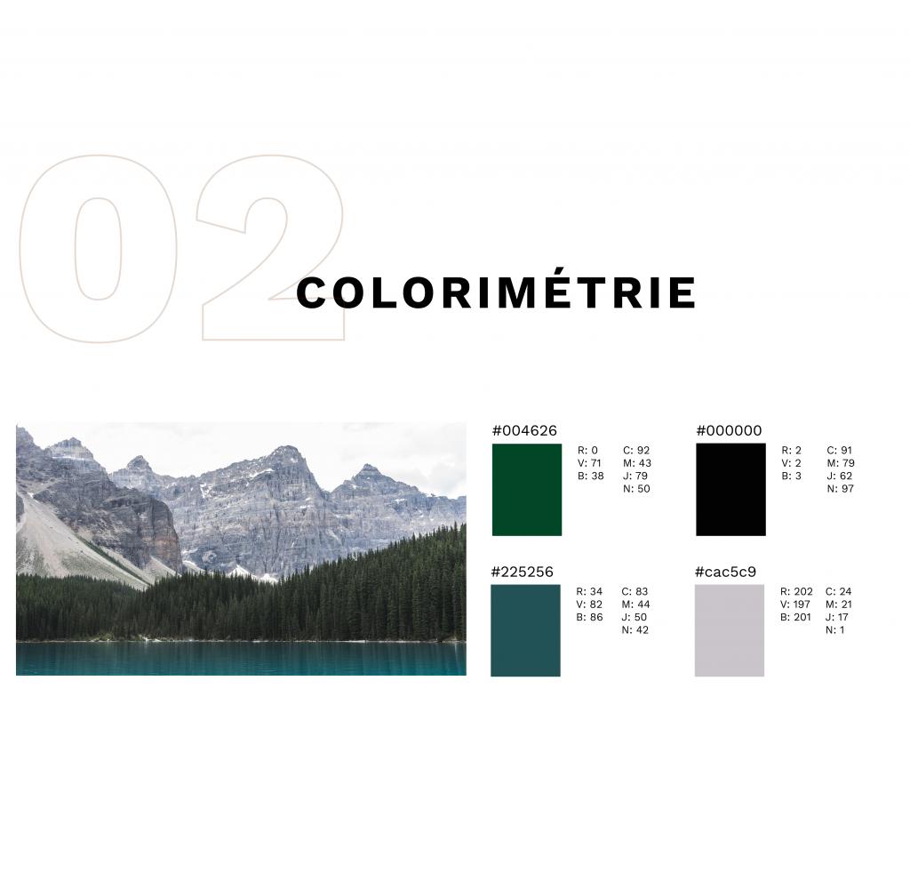 colorimétrie de l'identité du fil sauvage avec photo de montagne